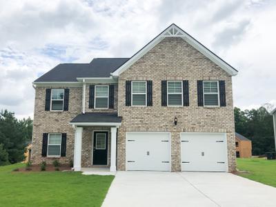 Panhandle Valley New Homes in Hampton GA